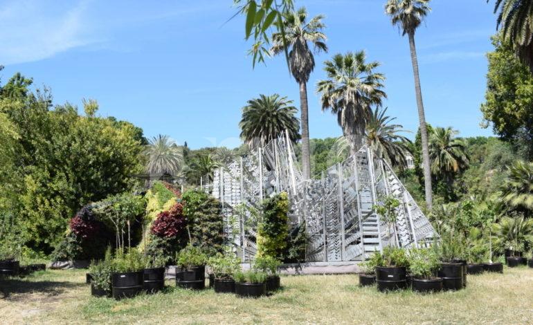 The Living Chapel, all'Orto Botanico a Roma una Porziuncola di alberi e alluminio riciclato