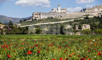 The Economy of Francesco School, al via il corso di alta formazione