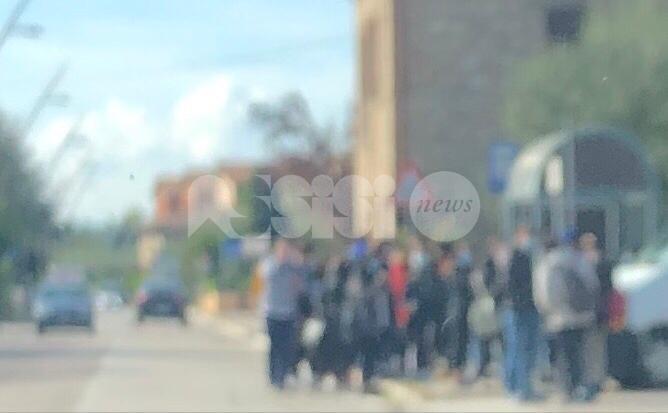 """Trasporti scolastici 'affollati', la proposta da Assisi: """"Valutare l'uso degli NCC"""""""