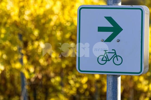 Mobilità sostenibile, le proposte dell'ex assessore Mignani