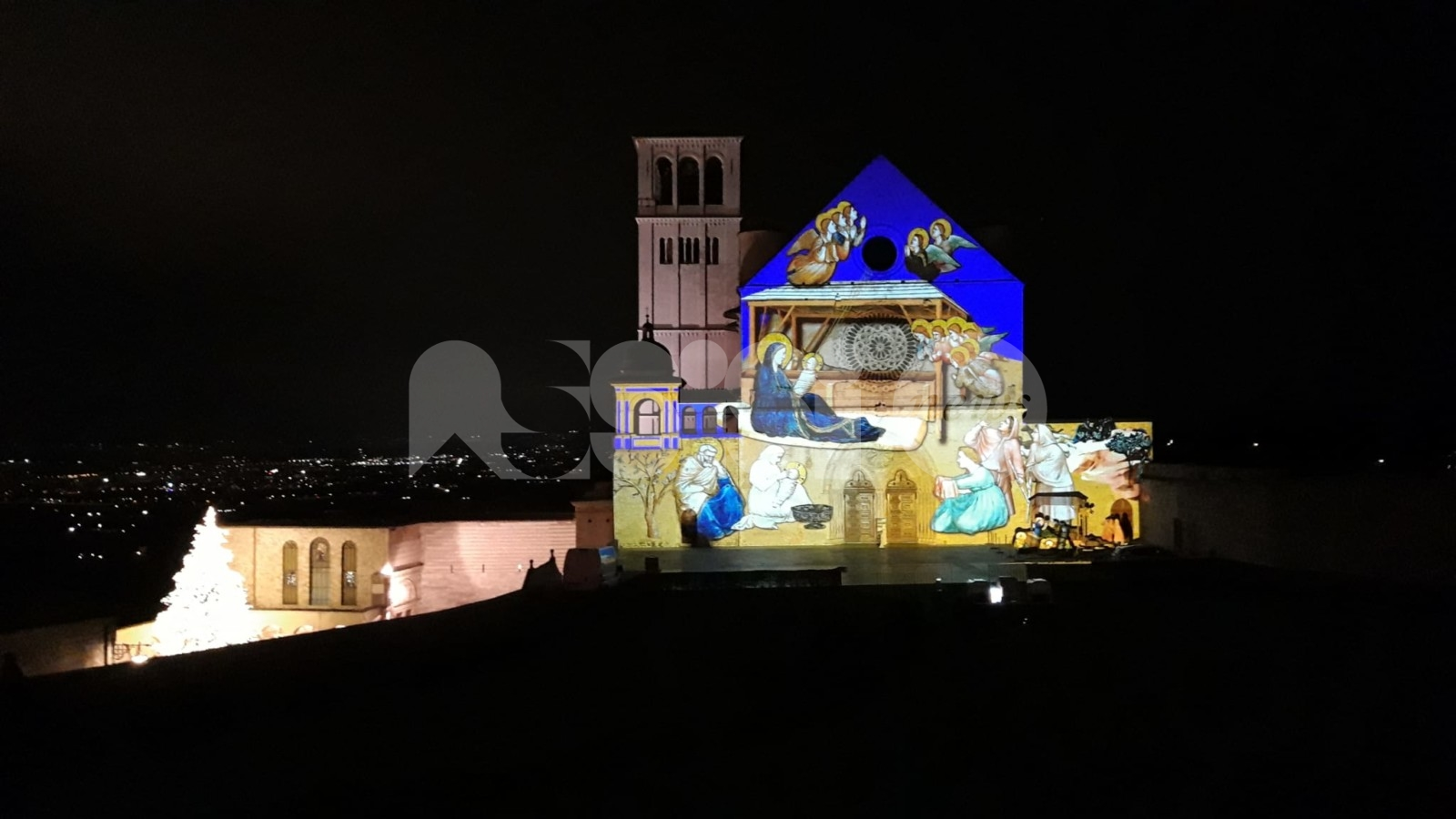 Natale ad Assisi 2020, accesi albero e presepe a San Francesco: omaggio agli operatori sanitari tra modernità e tradizione (foto+video)