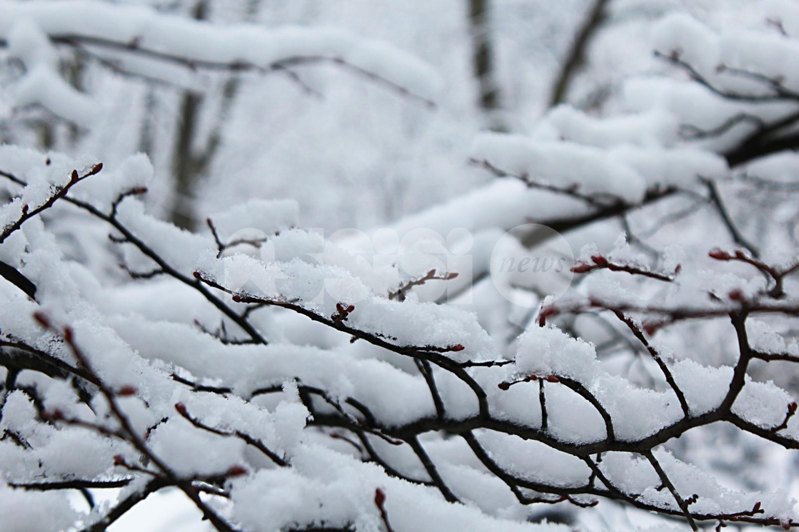 Meteo Capodanno 2021: potrebbe essere un inverno storico per freddo e neve