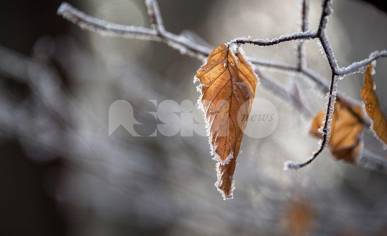 Meteo Assisi 8-10 gennaio 2021: grigio in pianura e neve sui monti, le previsioni del weekend