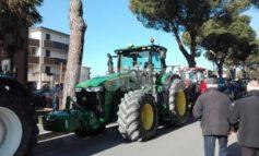 Festa degli Agricoltori 2021: l'evento si ferma, la solidarietà per la fondazione Meyer no