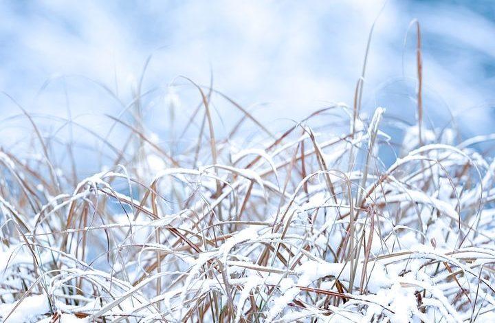 Meteo Assisi 12-14 febbraio 2021: ondata di freddo intenso e forse nevicate