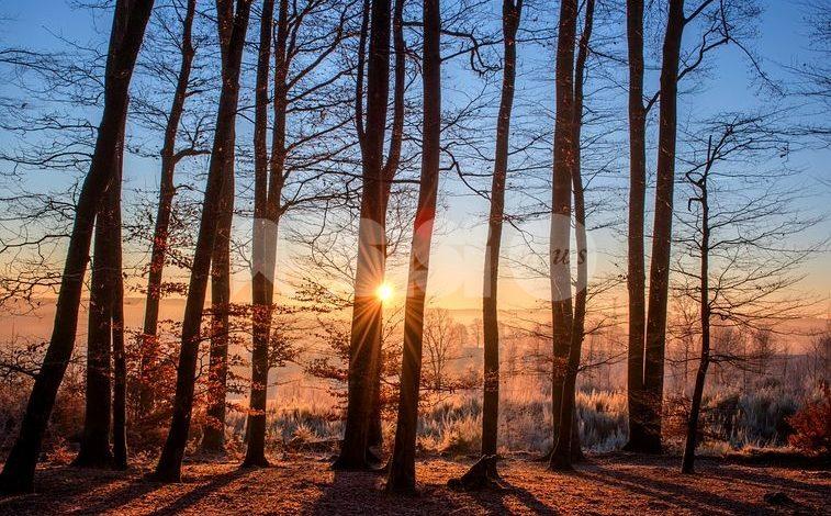 Meteo Assisi 19-21 febbraio 2021: dopo il freddo, un primo accenno di primavera