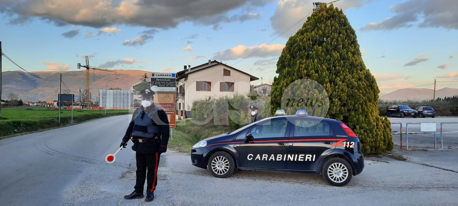 Incidente stradale da ubriaco e furto, doppia operazione dei carabinieri
