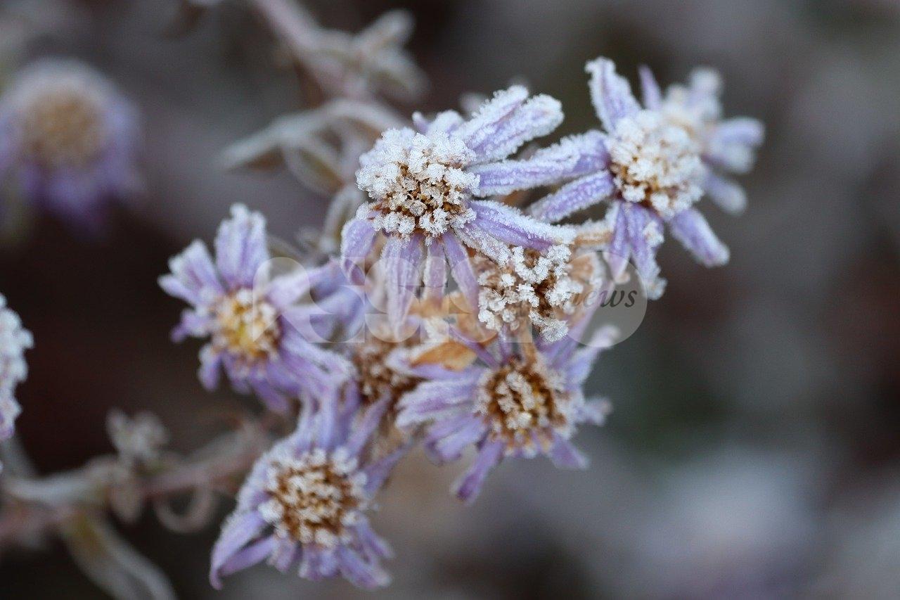 Meteo Assisi 19-21 marzo 2021, un freddo weekend chiude l'inverno