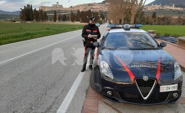 Spaccio di stupefacenti, i carabinieri arrestano un giovane 19enne