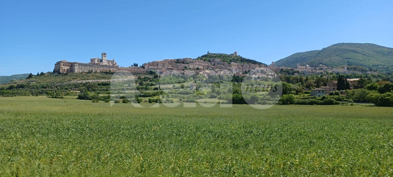 Quale Assisi?, conversazione online dell'associazione Costruire il futuro
