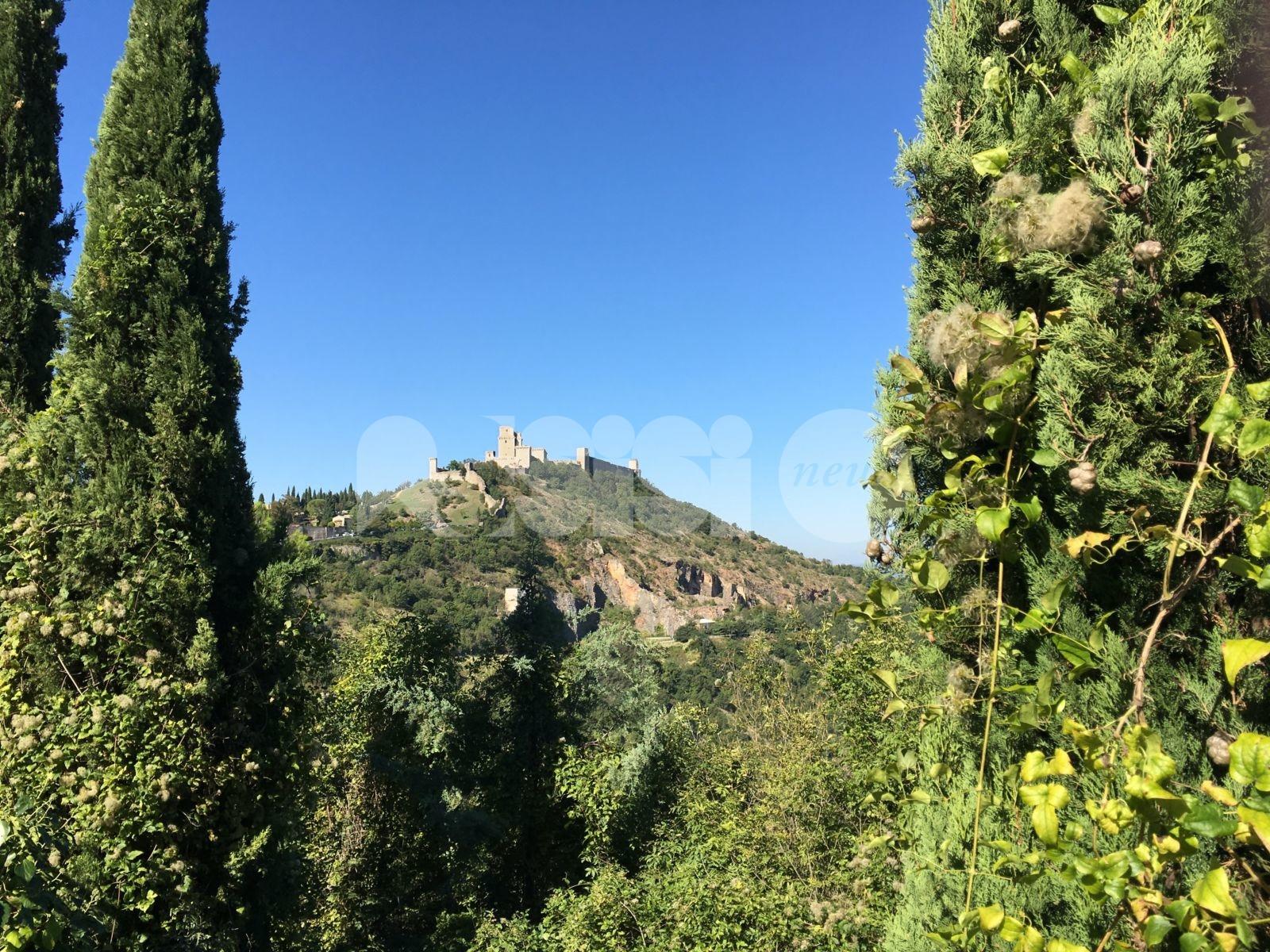 """Giornata mondiale dell'ambiente 2021, Assisi Nature Council: """"Tutti con piccoli gesti possiamo aiutare la Terra"""""""