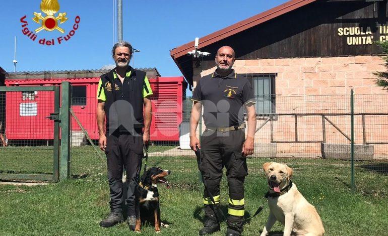 Cinofili umbri, arrivano tre new entry: per Perugia Blinky e Mariù (foto+video)