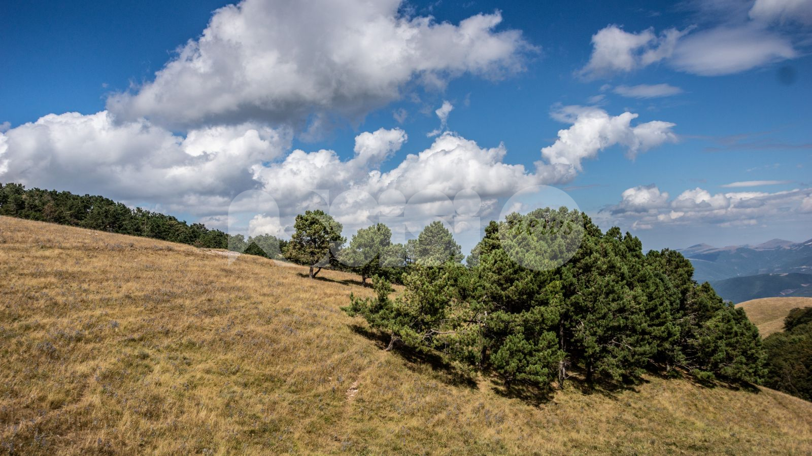 Destinazione Parco, presentato il progetto di valorizzazione del Subasio