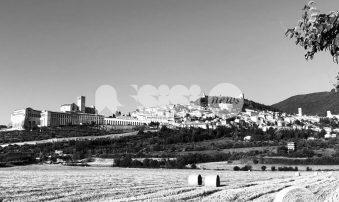 Assisi nel rapporto Caritas 2021 sulla povertà: luci e ombre in pandemia